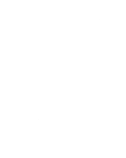 VF Outlet